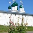 Nikitsky monastery in Pereslavl Zalessky, Golden ring of Russia. — Stockfoto #28538831