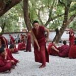 Tibet, the famous debate monks in Sera monastery near Lhasa — Stock Photo #34640117