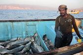 Yemen, Sokotra, Arabian Sea,  fisherman with catch on the evening fishing — Foto de Stock