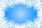 Vector blue frame with fir branches — Stock Vector