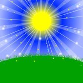 Vector illustration - Morning in the meadow — Stock Vector