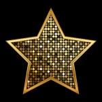 Vector illustration of gold shiny star — Stock Vector #27575901