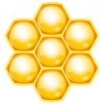 Vector illustration of honeycomb — Stock Vector