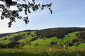 Black forest landscape in germany — Stock Photo