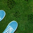 Blue Shoe print on green grassland - Stock Photo