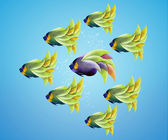 Purble angelfish between group of green angelfish — Stock Photo