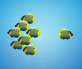 Angelfish in difference way — Stock Photo