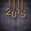 2013 New Year — Stock Photo #16487199