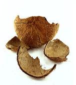 Cáscara de coco — Foto de Stock