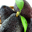 Avocados — Stockfoto #27336043