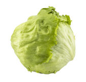 Green Iceberg lettuce — Stock Photo