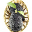 Stock Photo: Black Ripe Avocados