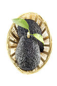 Black Ripe Avocados — Stock Photo