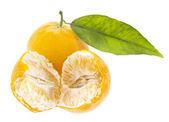 Clementine — Stock Photo