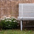 Vintage bench with flawers — Stock Photo #27752091