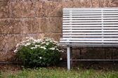Vintage bench with flawers — Stock Photo