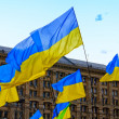 Stock Photo: Ukraine flags