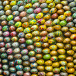 Lavra eggs — Stock Photo