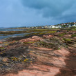 Stock Photo: City at rough coastline of Scotland