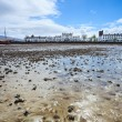 Stock Photo: Mudflats with village in background