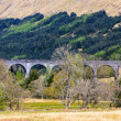 Stock Photo: Train bridge through valley