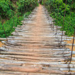 Bamboo bridge for crossing a river — Foto de Stock