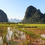Farmland in a valley with limestone rocks around. — Stock Photo #21630627