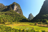 Green valley with Limestone rocks in Asia — Stock Photo