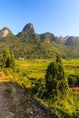 Morning sunshine over limestone rock formations — Stock Photo