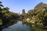 River running through a jungle — Stock Photo