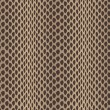 Seamless vector structured snake skin — Stock Photo