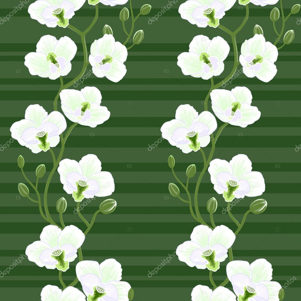 无缝壁纸与兰花花