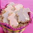 Easter bunny cookies — Stock Photo