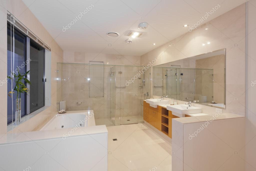 Bagno moderno twin — foto stock © zstockphotos #22294665