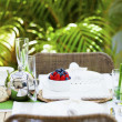 Outdoor table setting - Stock Photo