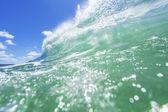 Fresh wave — Stock Photo