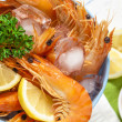 Bucket of king prawns on ice — Stock Photo