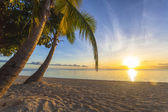 Atardecer en la playa — Foto de Stock