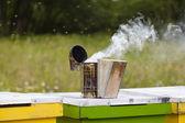 Bee smoker — Stock Photo