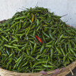 Basket full with green peppers and one red pepper — Stock Photo #13771624