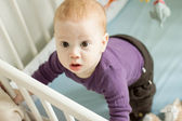 Top view of adorable baby boy trying to stand up — Stock Photo