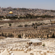 Jerusalem Panorama Viewpoint - Stock Photo