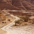 Royalty-Free Stock Photo: Road Through Negev Desert Hills