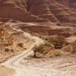 Road Through Negev Desert Hills - Stock Photo