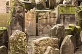 Historic Jewish Cemetery In Prague — Stock Photo