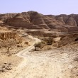 Dusty Road In The Negev Desert — Stock Photo