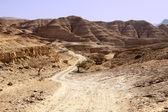 Dusty Road In The Negev Desert — Stock Photo