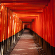 Walkway Between Torii Gates — Stock Photo