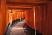 Path Through Torii Gates — Stock Photo