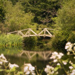 Garden Bridge Over Pond — Foto de Stock   #37660427